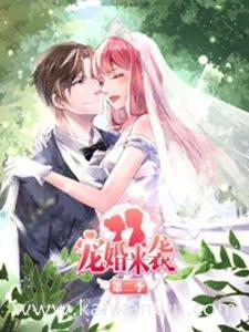 宠婚来袭第二季